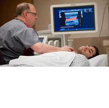 Renal Ultrasound